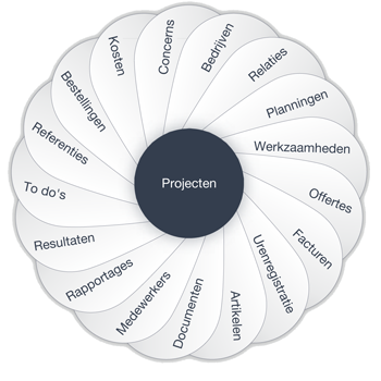 Project management programma
